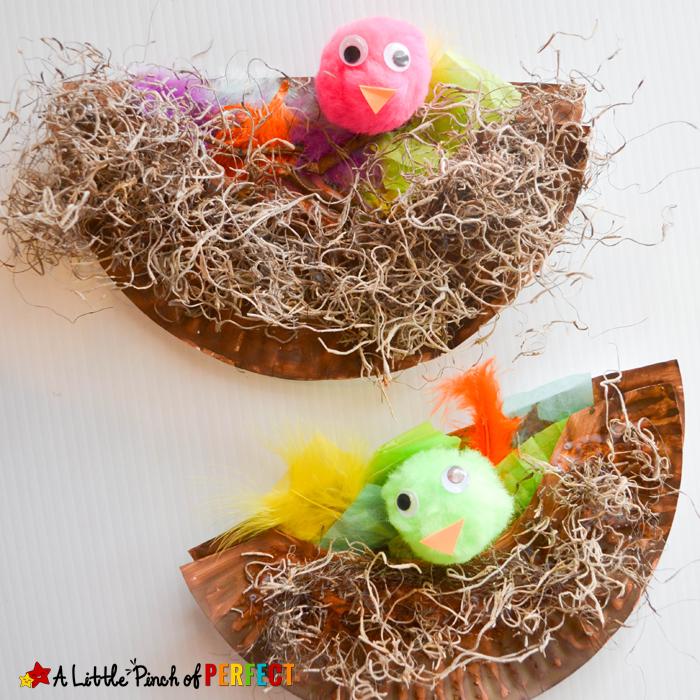 paper plate crafts nest